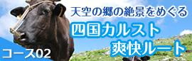 course02 四国カルスト爽快ルート